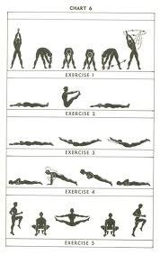 fitness fad 2