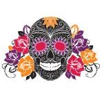 skull17-01-111413-2336