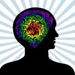 human_mind-92313-530